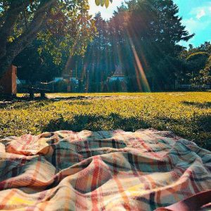 Picnic Rug on Grass at Party in the Park