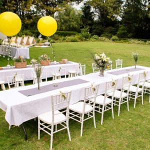 Dining Table Setup for Park Party