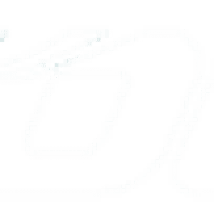 Toll Logo white
