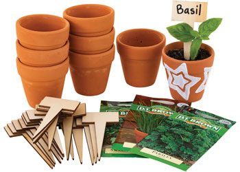Garden Decorating Kit with Seeds