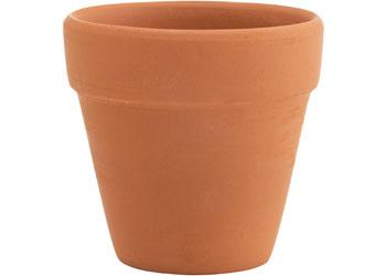 Blank Ceramic Pot Plant for Decorating