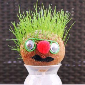 Decorated Grass Head