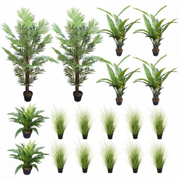 Areca Palms, Banana Palms, Bird Nest and Wild Grass Plants in Pots