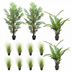 Areca Palms, Banana Palms and Wild Grass Plants in Pots